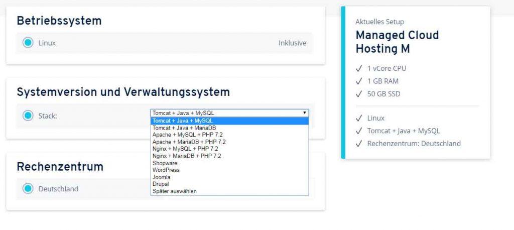 Screenshot Bestellprozess Ionos Cloud Professional Hosting